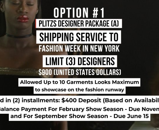 SHIPPING SERVICE DESIGNER PACKAGE (A) TO FASHION WEEK IN NEW YORK
