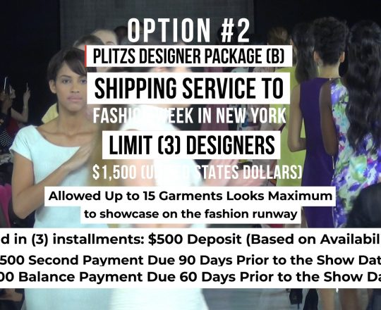 SHIPPING SERVICE DESIGNER PACKAGE (B) TO FASHION WEEK IN NEW YORK